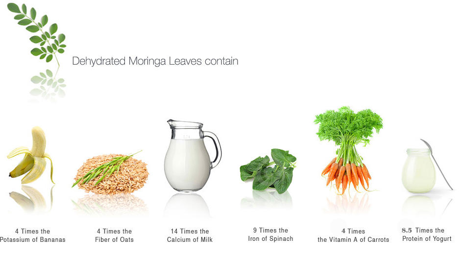 Moringa for Website